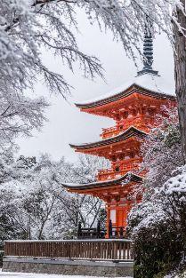 Япония Токио зима